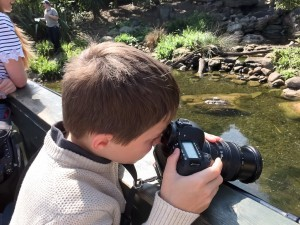 Taking photos of the otters at london wetlands centre 300x225
